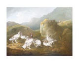 Ptarmigan in a Mountainous Landscape with Sportsmen and Dogs Beyond Giclee Print by Philip Reinagle