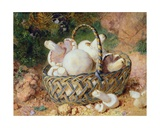 A Basket of Mushrooms, 1871 Giclee Print by Jabez Bligh