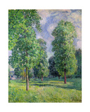 Landscape at Sevres, 1878 Giclee Print by Alfred Sisley