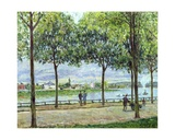 The Avenue of Chestnut Trees, St. Cloud, 1878 Giclee Print by Alfred Sisley