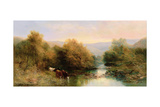 Cattle on the Dart in Autumn Giclee Print by William Widgery