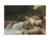 River Study, C.1846-50 Giclee Print by Alexandre Calame