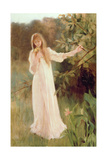 Daydreams Giclee Print by Albert Lynch