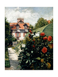 The Dahlias, Garden at Petit Gennevilliers, 1893 Giclee Print by Gustave Caillebotte