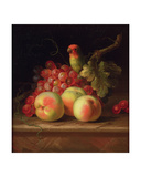 Still Life with Peaches and Grapes on a Ledge with a Parrot Perched Above Giclee Print by Tobias Stranover