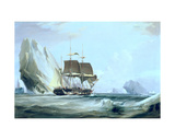 The Barque 'Auriga' in Antarctic Waters, 1838 Giclee Print by George the Elder Chambers