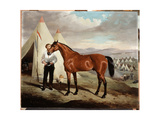 Sir Briggs, Horse of Lord Tredegar (1831-1913) of the 17th Lancers, in Camp in Crimea 1854, 1856 Giclee Print by Alfred de Prades