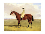 'Bay Middleton' with Robinson, 1836 Giclee Print by John Frederick Herring Jnr
