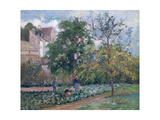 Orchard at Maubisson, Pontoise, 1876 Giclee Print by Camille Pissarro
