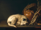 A Sleeping Dog with Terracotta Pot, 1650 Giclee Print by Gerrit or Gerard Dou