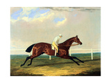 'tarrare' Ridden by George Nelson Giclee Print by John Frederick Herring Snr