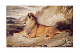 Lion Resting Giclee Print by Antoine Louis Barye