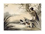 Shooting Duck, Engraved by H. Merke, C.1809 Giclee Print by Samuel Howitt