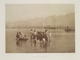 Water-Rats, C.1889 Photographic Print by Frank Meadow Sutcliffe