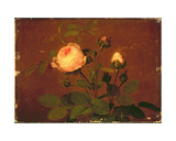 Roses, Roses Giclee Print by Otto Didrik Ottesen