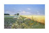 Summer Landscape Giclee Print by Eugeniusz Wrzeszcz