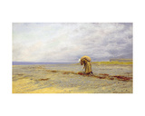 Gathering Seaweed Giclee Print by Arthur Hughes