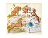 Gladiators Fighting with Animals Giclee Print