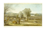 Coursing - a View of Hatfield Park, Engraved by James Pollard (1797-1867) Giclee Print by James Pollard