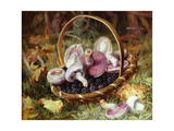 A Basket of Wild Mushrooms and Blackberries Giclee Print by Jabez Bligh