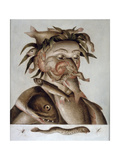 An Allegory of Water Giclee Print by Giuseppe Arcimboldo