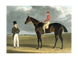 'Birmingham', Winner of the St Leger, 1830, Engraved by R.G. Reeve, 1831 Giclee Print by John Frederick Herring Snr