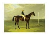 'sluggard' with Flatman Up, 1832 Giclee Print by John Frederick Herring I