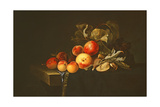 Still Life of Plums, Peaches, Almonds and Grapes on a Draped Ledge, 1650 Giclee Print by Willem van Aelst