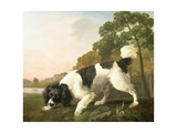 A Spaniel in a Landscape, 1771 Giclee Print by George Stubbs