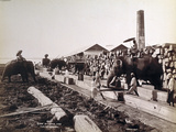 Scene at a Timber Yard in Rangoon, Burma, 1890-99 Photographic Print by Philip Adolphe Klier