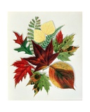 Autumn Leaves, 1858 Giclee Print by Nina Moore