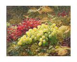Grapes Giclee Print by William Jabez Muckley