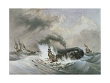 The Whale, 1836 Giclee Print by Jean Francois Garneray