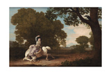 The Farmer's Wife and the Raven, 1783 Giclee Print by George Stubbs