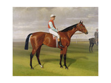 'Isinglass', Winner of the 1893 Derby, 1893 (Detail) Giclee Print by Emil Adam