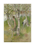 Nude Boy Among Birches Giclee Print by Carl Larsson