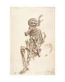 A Human Skeleton Giclee Print by James Ward