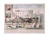 Death on the Striped Pig, 1839 Giclee Print by David Claypoole Johnston
