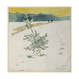 Winter Landscape Giclee Print by Carl Larsson