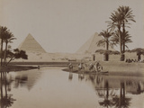 View of the Pyramids, Egypt, 1893 Fotografisk tryk
