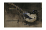 The Magpie Giclee Print by Joseph Crawhall