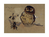 Owl and Bees Giclee Print by Joseph Crawhall