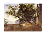 Garden of the Capuchin Friars, Near Sorrento, 1827 Giclee Print by Carl Wilhelm Goetzloff