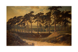 Harrow from the First, Hampstead Heath, 1875 Giclee Print by Edmund John Niemann