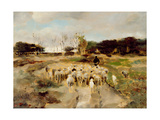 Sheep Flock Giclee Print by Anton Mauve