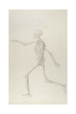 Human Skeleton, Lateral View Seen from the Left, Running, Illustration from 'A Comparative… Giclee Print by George Stubbs
