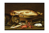 A Still Life with Carp in a Ceramic Colander, Oysters, Crayfish, Roach and a Cat on the Ledge… Giclee Print by Clara Peeters