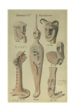 Shapira's 2nd Collection, 1873 Giclee Print by Claude Conder