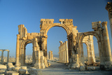 The Monumental Arch Erected During the Reign of the Emperor Septimus Severus, at the Start of the… Photographic Print