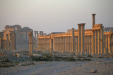 The Colonnaded Central Street Photographic Print